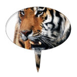 Tigers wild life cake toppers