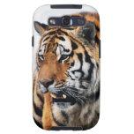 Tigers wild life galaxy SIII case