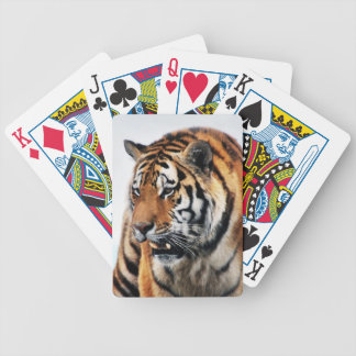 Tigers wild life poker cards