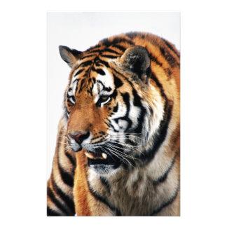 Tigers wild life stationery design