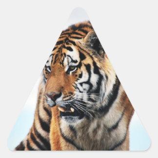 Tigers wild life triangle sticker
