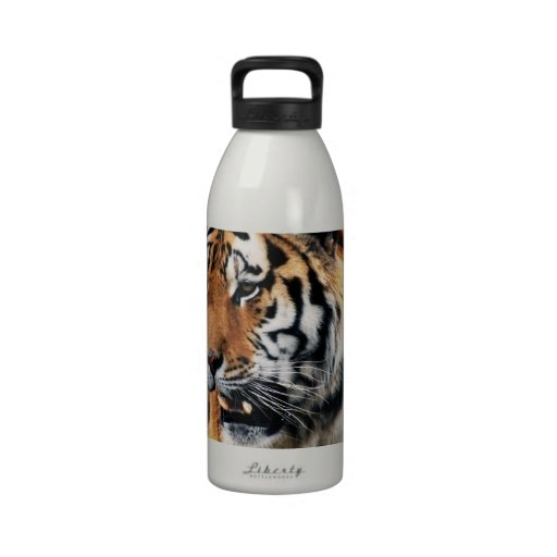 Tigers wild life water bottle