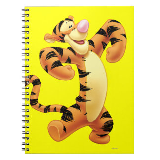 Tigger 2 spiral notebooks