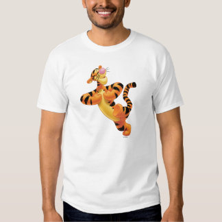Tigger 6 camisas