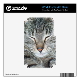 Tigger Skins For iPod Touch 4G