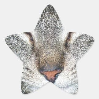 Tigger Star Sticker