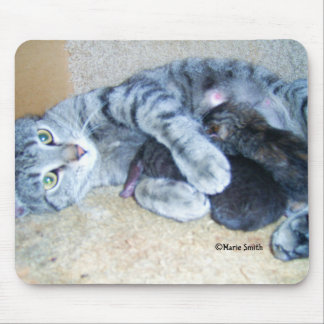 Tigger With Litter Mouse Pad