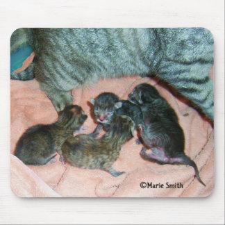 Tigger's Kittens Mouse Pad