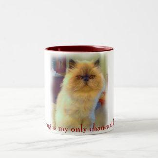 Tiggre's Chance at Fame Two-Tone Coffee Mug