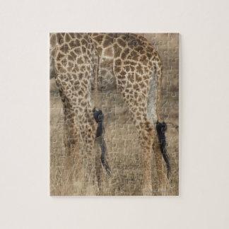 Tight crop of two Giraffes (Giraffa Jigsaw Puzzle