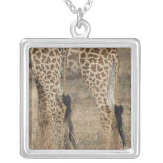 Tight crop of two Giraffes (Giraffa Silver Plated Necklace