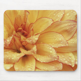 Tight in photographs of Dalhia flower with the 2 Mouse Pad