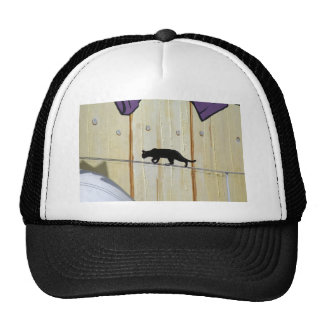 tightrope walking cat trucker hat