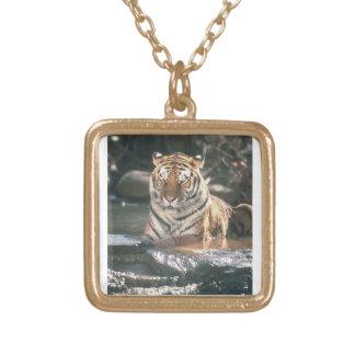 tigra gold plated design square pendant necklace