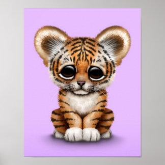 Tigre adorable Cub de bebé en púrpura Póster