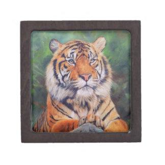 Tigre adulto - pequeña caja de la baratija cajas de regalo de calidad