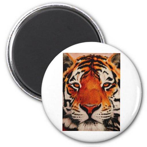 Tigre (Amur) Imán Redondo 5 Cm