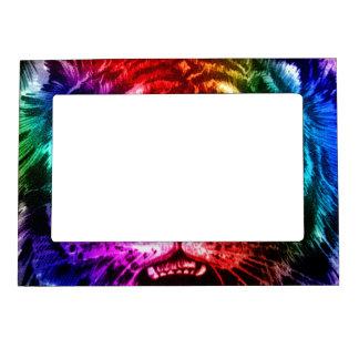 Tigre artsy del arco iris marcos magneticos