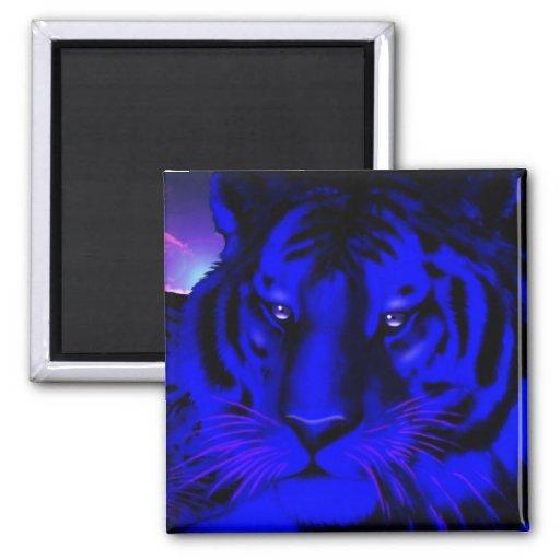 Tigre azul eléctrico imán cuadrado