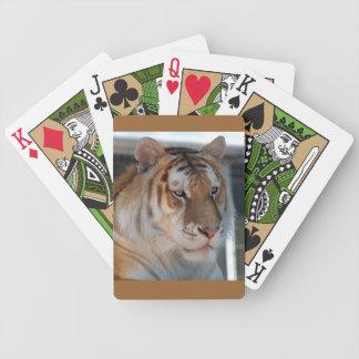 Tigre Barajas De Cartas
