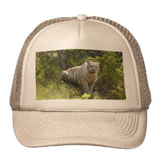 Tigre blanco 008 gorro de camionero
