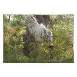 Tigre blanco 010 manteles individuales