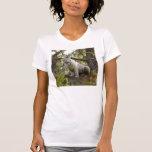 Tigre blanco 011 camisetas