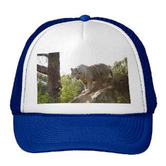 Tigre blanco 013 gorras de camionero