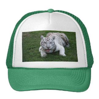 Tigre blanco 014 gorros bordados