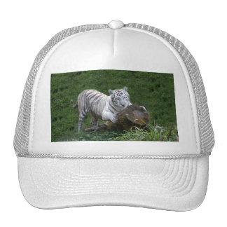 Tigre blanco 015 gorras de camionero