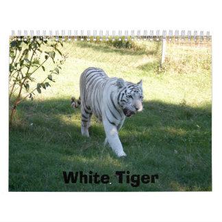 Tigre blanco 016, tigre blanco calendario de pared