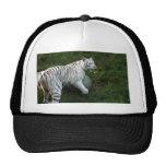 Tigre blanco 019 gorros bordados