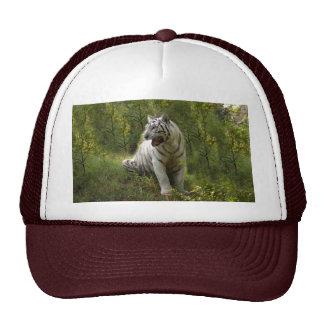 Tigre blanco 020 gorros