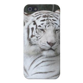 Tigre blanco 2 iPhone 5 protector