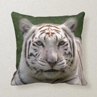 Tigre blanco 3949e cojines