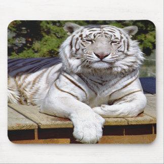 Tigre blanco 9 Mousepad Tapete De Raton