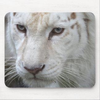 tigre blanco alfombrilla de raton