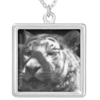 Tigre blanco BW Colgante Personalizado