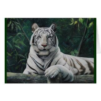 tigre blanco card