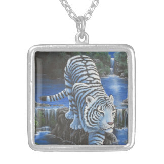 Tigre blanco collar