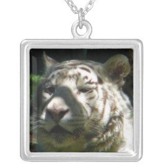 Tigre blanco colgante