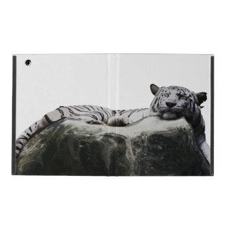 Tigre blanco de la nieve - el dormir del gato