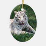 Tigre blanco en imagen vertical del marco de la hi ornamentos de reyes magos