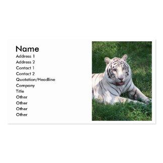 Tigre blanco en imagen vertical del marco de la tarjetas de visita