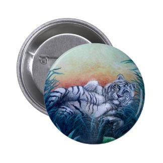 Tigre blanco en ojos azules de la selva