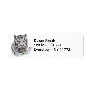 Tigre blanco hambriento etiquetas de remite