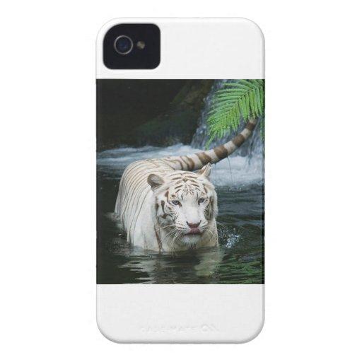 Tigre blanco iPhone 4 Case-Mate cárcasa