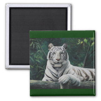 tigre blanco refrigerator magnets