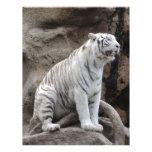 Tigre blanco membretes personalizados