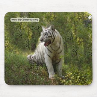 Tigre blanco Mousepad (10x8) Tapetes De Raton
